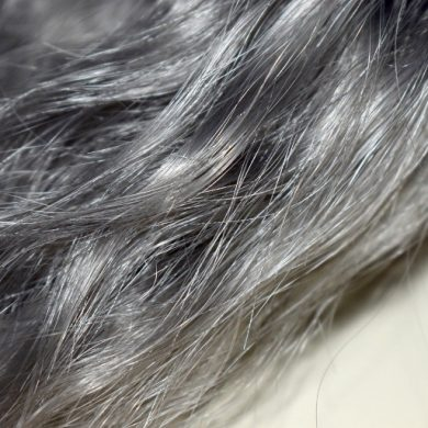 This shows a gray hair sample from a hairdresser's sample book