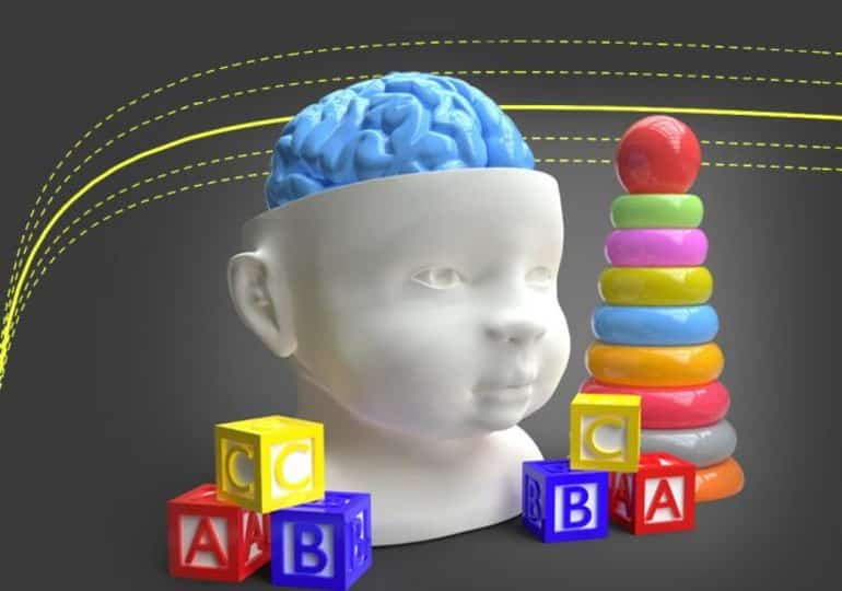This shows a model of a child's head and building blocks