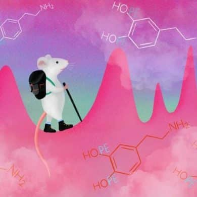 This is a cartoon of a mouse walking up a mountain surrounded by chemical symbols