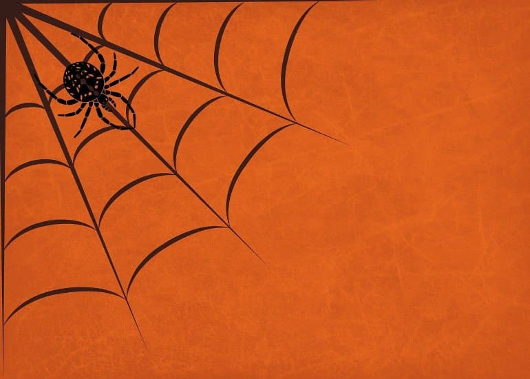 This is a cartoon of a spider in its web