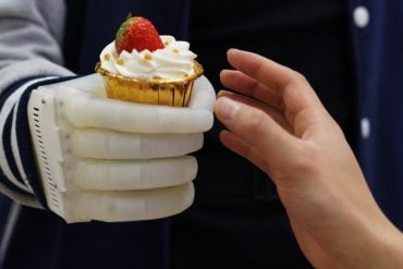This shows a person using the hand, holding out a cake