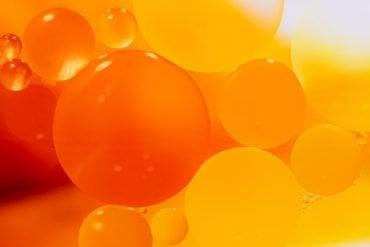These bubbles represent visceral fat