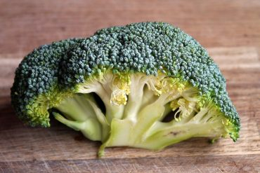 This shows a piece of broccoli