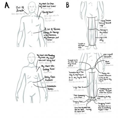 This shows the body map