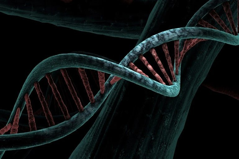 This shows a dna double helix
