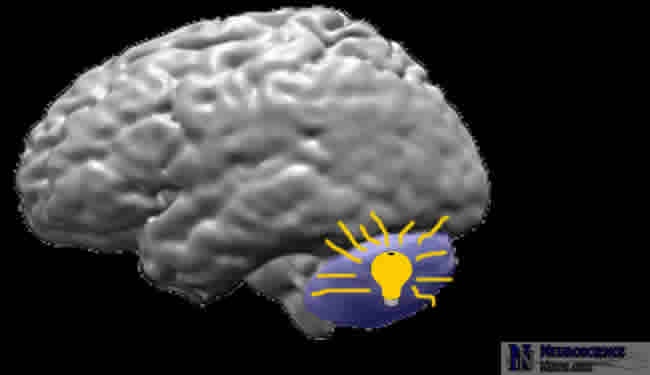MRI brain image with cerebellum highlighted with cheesy light bulb hovering.