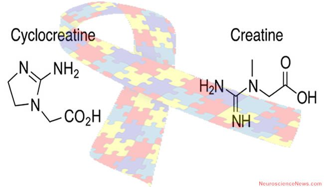 The structure of cyclocreatine and creatine are shown over a autism awareness ribbon.