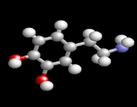 Dopamine Gene Variations Academic Performance