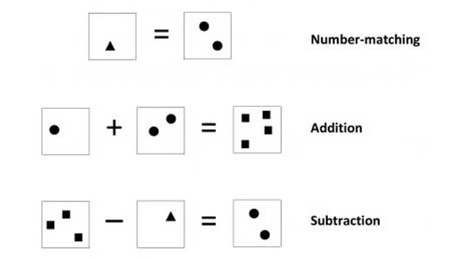 Boxes with circles, triangles and squares are shown. Caption describes well.
