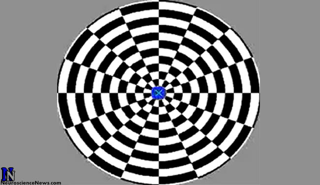 The motion aftereffect optical illusion still image with white and black rectangles inside a circle. The circle is divided like a pie chart with an x in the center. The x is inside a little blue circle.