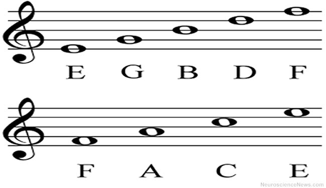 Music Staff with FACE whole notes displayed. Music and early language acquisition article.