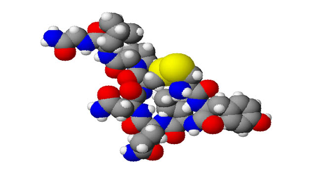 A 3d model of Oxytocin